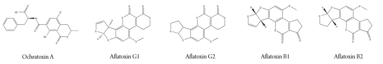 Mycotoxin Molecule